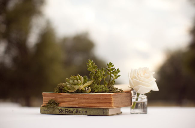 DIY Vintage Succulent Book Planters by Wednesday Featured on Green Wedding Shoes