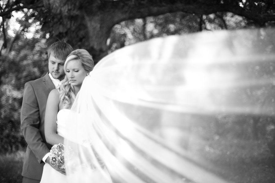 Ann Ahrens John Teigland Wedding Aly Carroll Photography