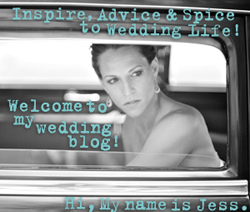 Jessica Hardy Storyboard Wedding
